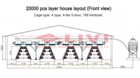 20,000 layers in one chicken house